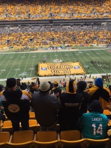 I used my Terrible Towel to wave...and wipe snot off my face.  Thanks, January.